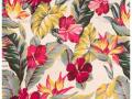 island-hibiscus